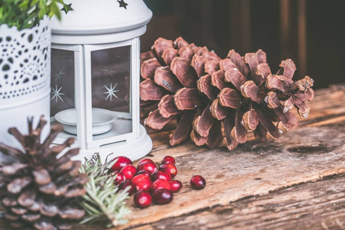 pine-cones-christmas-the-london-shutter-company